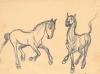 horsesdancing