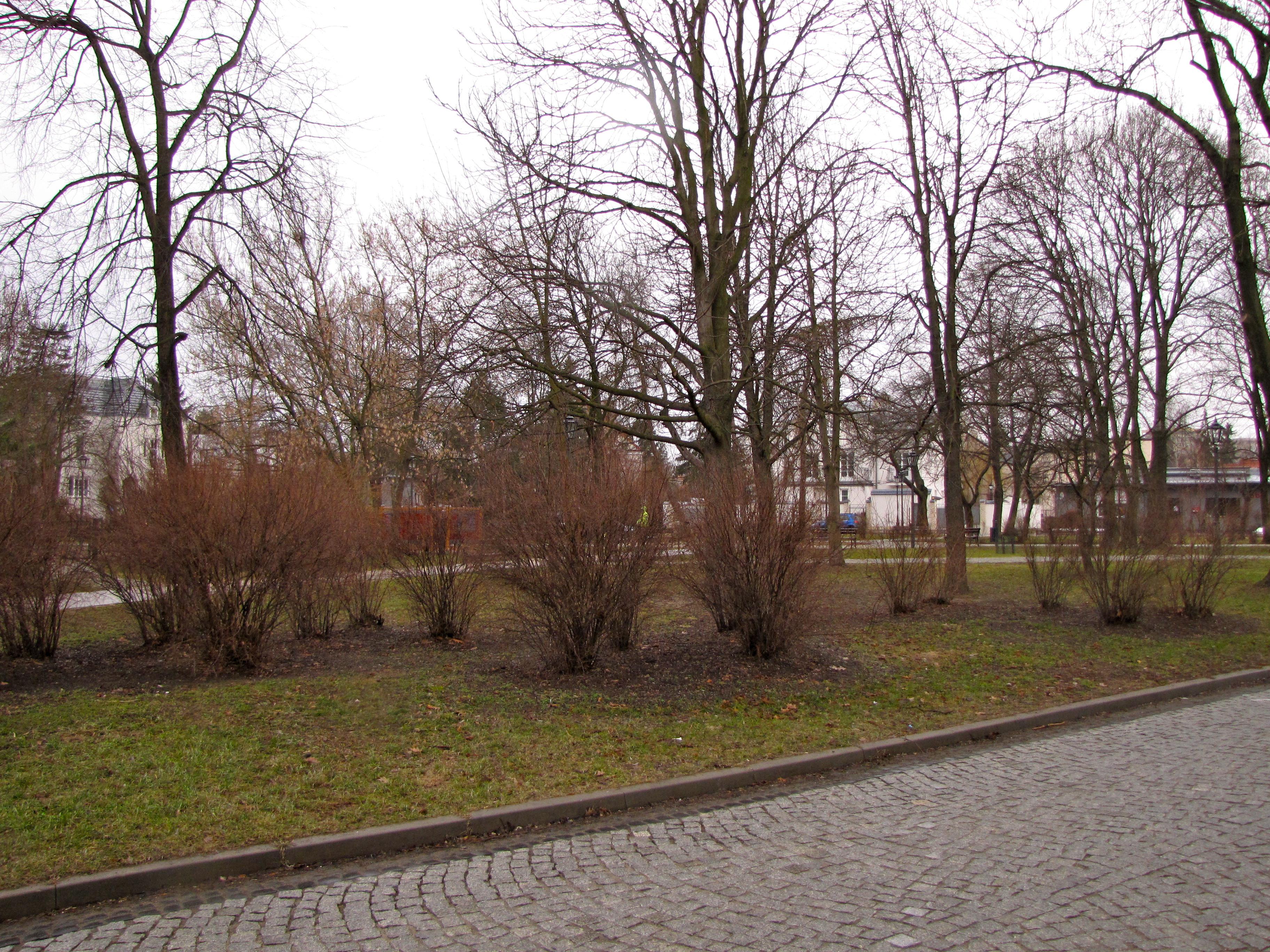 City Garden Czerniaków (2013)